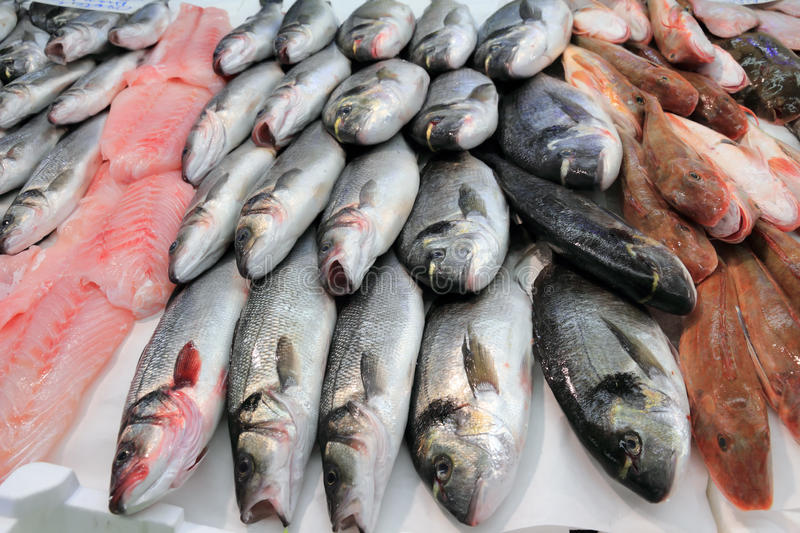 Fish market. Sea bass and bream fresh fish at the market stock images