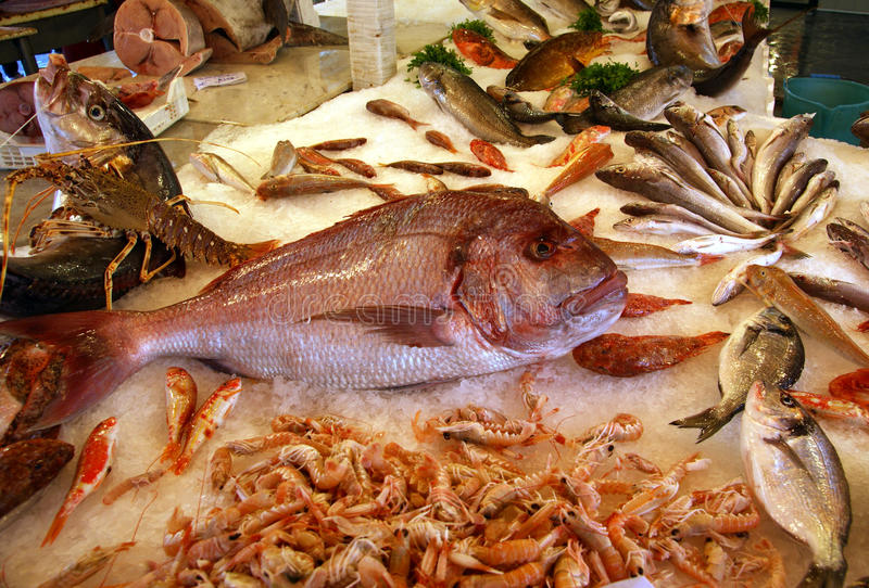 Fish at market. Rows of fish in a market display palermo stock photo