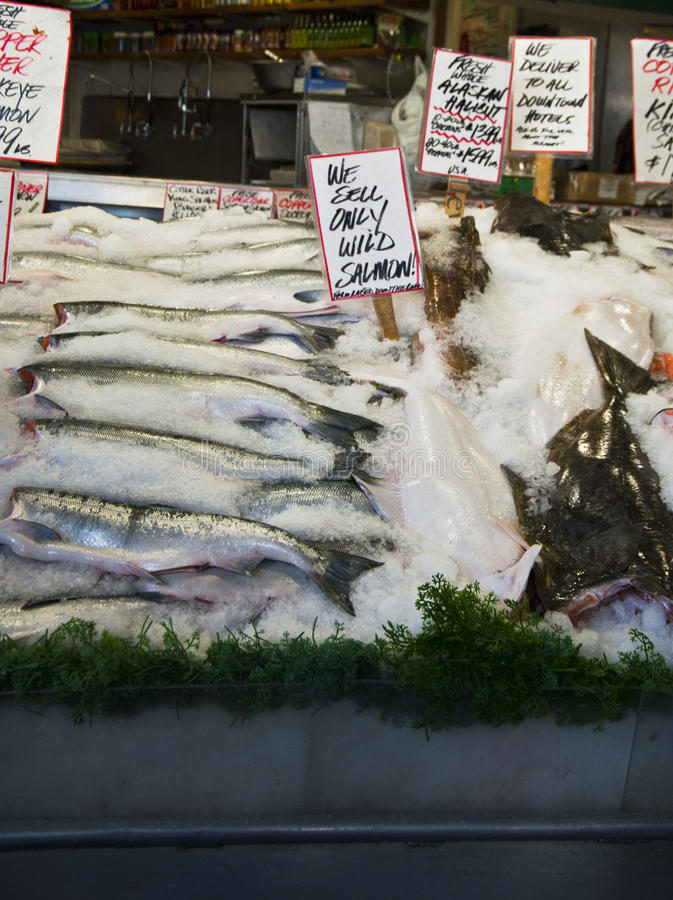 Download Fish at market stock image. Image of marketing, skin - 20139461