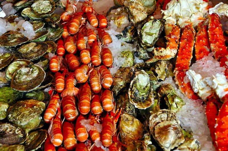 Fish market of Bergen Norway. Fish and seafood at the famous fish market in Bergen Norway stock photo