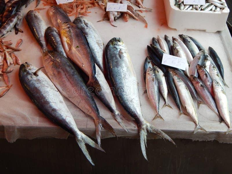 Fish market in Catania, Sicily, Italy stock photography