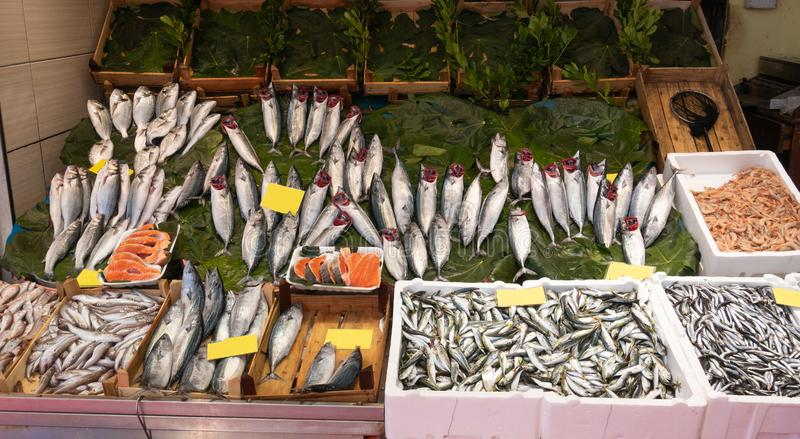 Fish market counter with fresh sea catch. Fish market counter with fresh catch various type of seafood clear labels stock photo