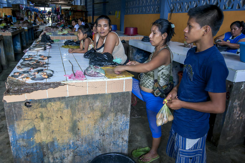 The fish market in Indiana on the Amazon River in Peru. A family display their catch of piranha at the fish market in Indiana, a town on the Amazon River in royalty free stock photo