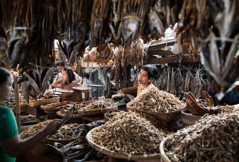 Fish market in Sittwe, Myanmar. royalty free stock image