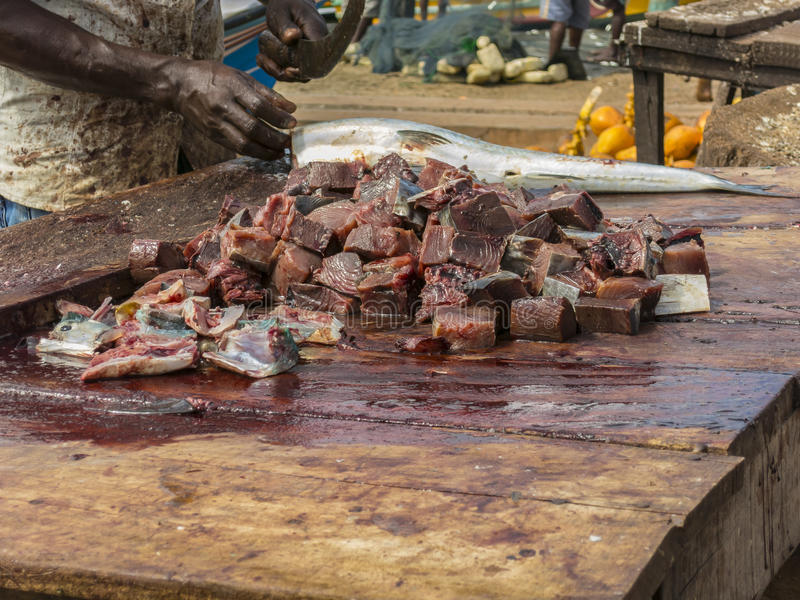 Fish market in Sri Lanka. Cut fish for a soup in open market royalty free stock photos
