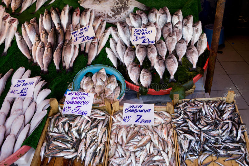 Fish Market Stall. In Istanbul, Turkey with fresh sea basses, sardines, flounders, mullets, price tags and names in Turkish royalty free stock image