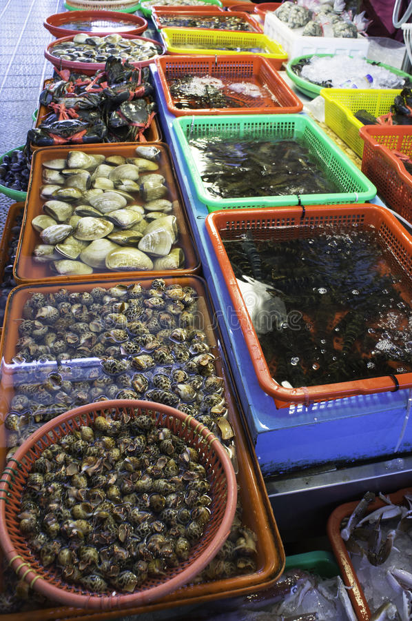 Download Fish market of Taiwan stock photo. Image of clams, whorl - 26828684