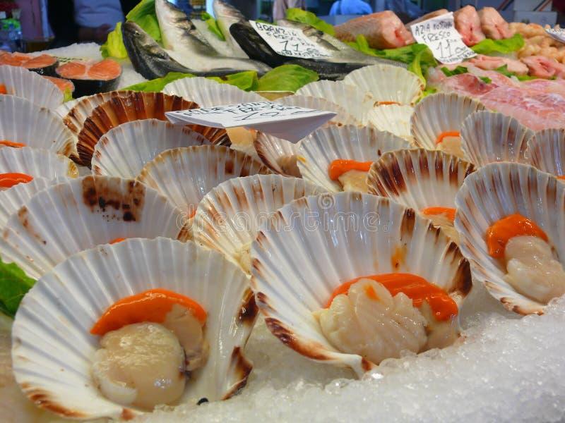 Fish market in Venice. Shells; Rialto; scallops royalty free stock photography