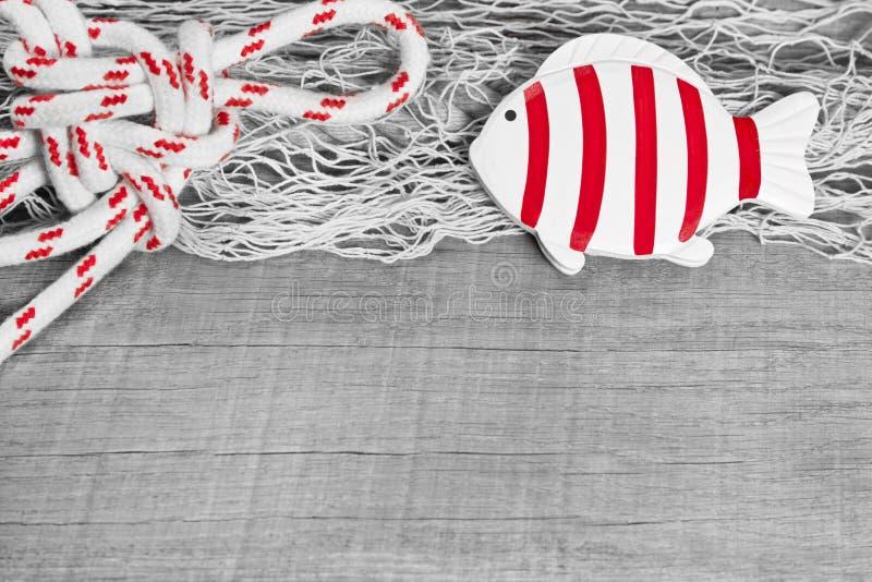 Fish and nautical rope stock photo