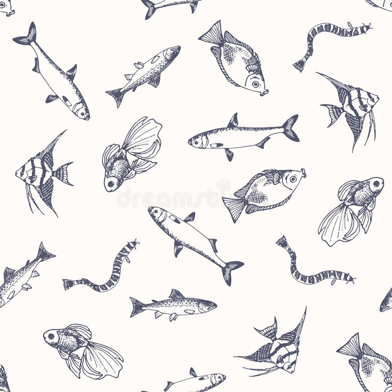 Free Fish Pattern. Sketch Of Salmon. Hand Drawn Vector Illustrations. Stock Photo - 99759830
