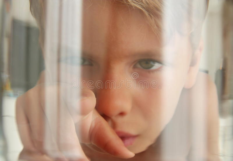 Fish perspective: looking a kid touching the aquarium glass royalty free stock images