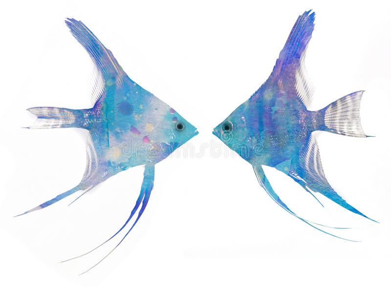 Fish. Photo with add aquarell texture - picture stock image