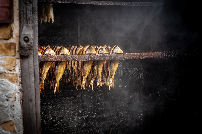 Fish processing plant. Fish of cold hot smoked. Smoked Fish In Smokehouse Box. Close Up Smoking Process Fish For Home Use. stock photos