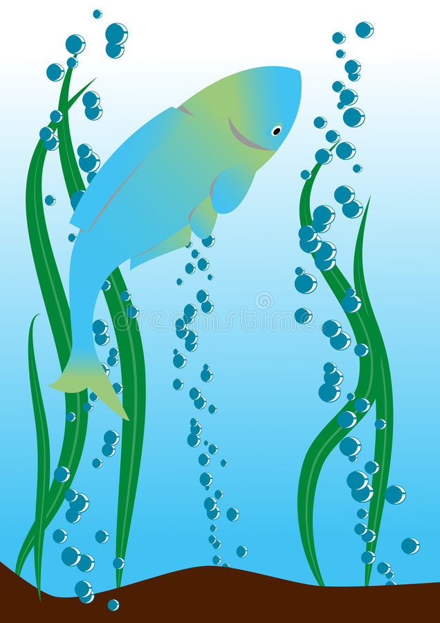 Download Fish in the river stock vector. Image of petal, animals - 6969245
