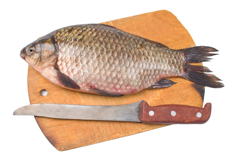 Fish a river crucian. stock photo