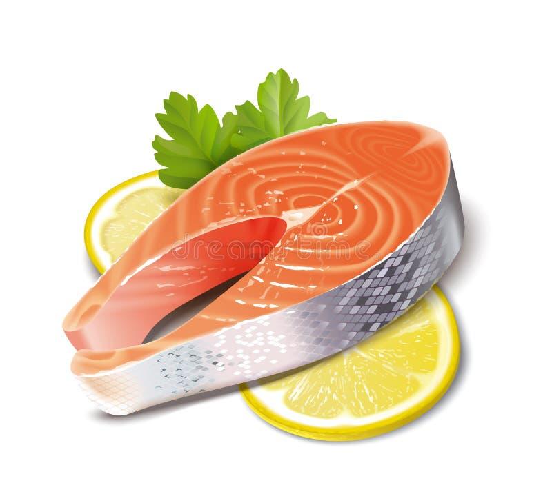 Fish. Salmon royalty free illustration