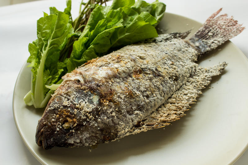 Fish With Salt Royalty Free Stock Images