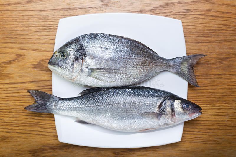Fish sea bass and dorado. Fresh raw fish sea bass and sea bream on a white plate on a wooden table stock image