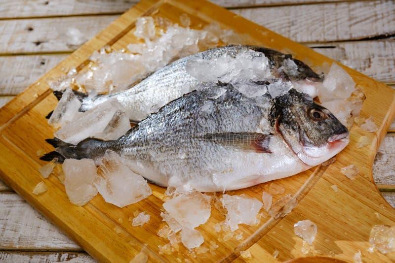Fish seafood dorado, raw food, cook.Fish seafood dorado raw with ice, cutting. Fish seafood dorado, raw food on cutting board, cook.Fish seafood dorado raw with royalty free stock photography
