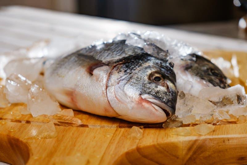 Fish seafood dorado, raw food, dinner.Fish seafood dorado raw with ice, nutrition. Fish seafood dorado, raw food on cutting board, dinner.Fish seafood dorado raw royalty free stock image