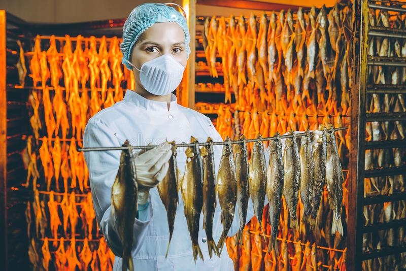Fish seafood factory royalty free stock image