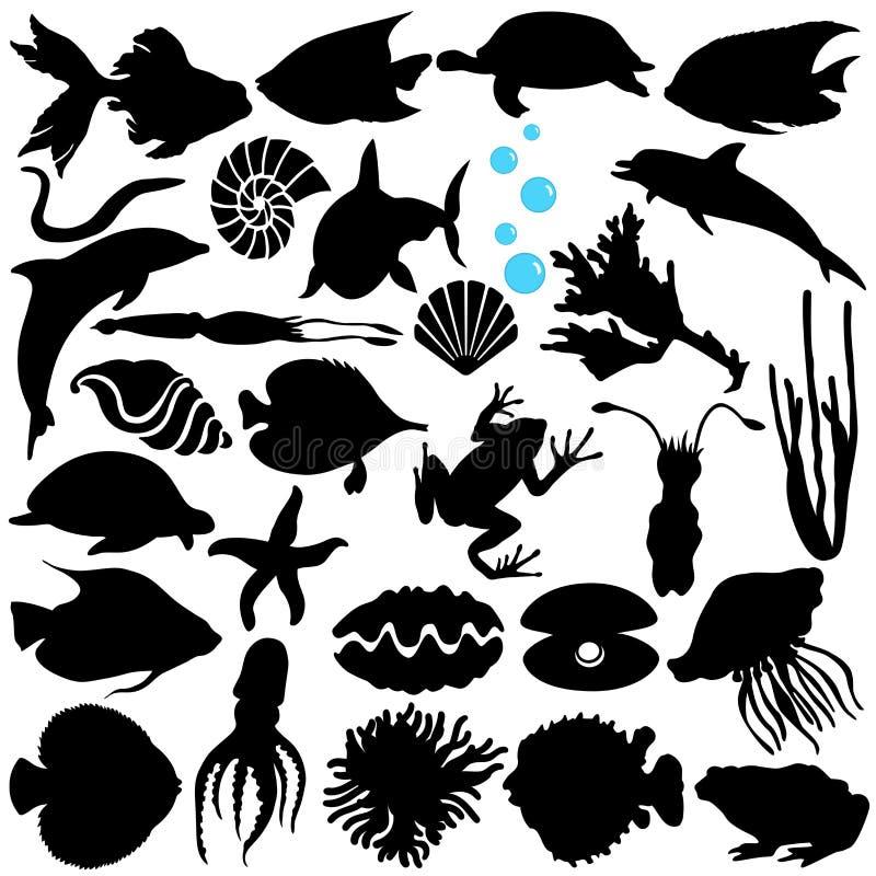 Fish, Sealife, (Marine life, seafood) stock illustration