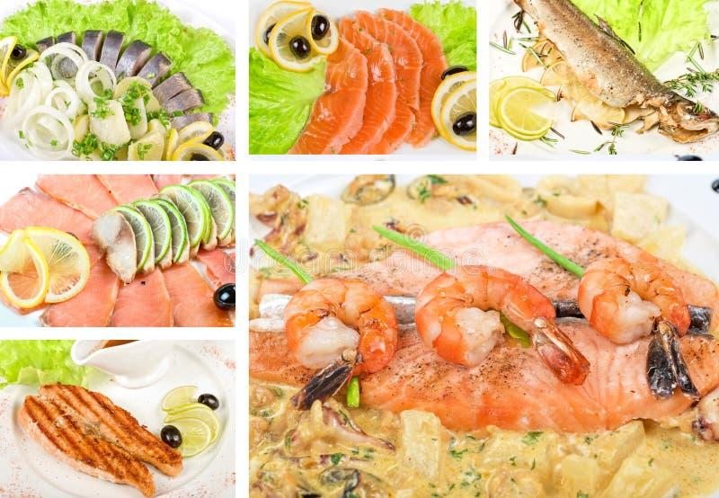 Download Fish set stock photo. Image of fresh, crispy, meal, closeup - 18324048