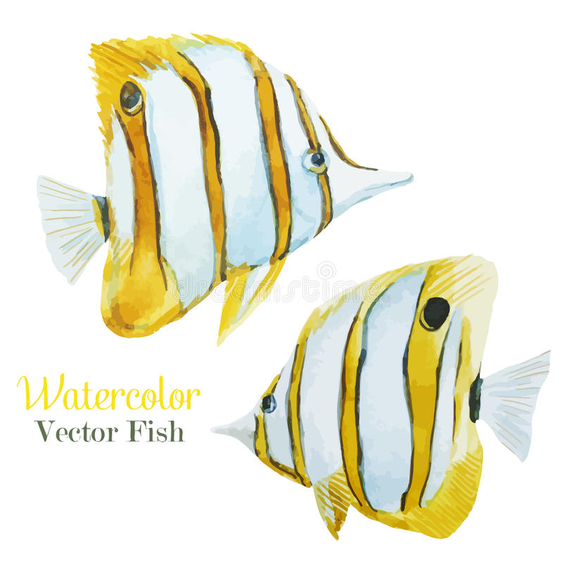 Fish set vector illustration