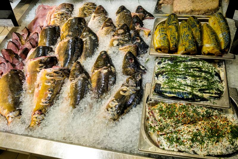 Fish showcase, assortment of fresh fish in the store.  stock photography