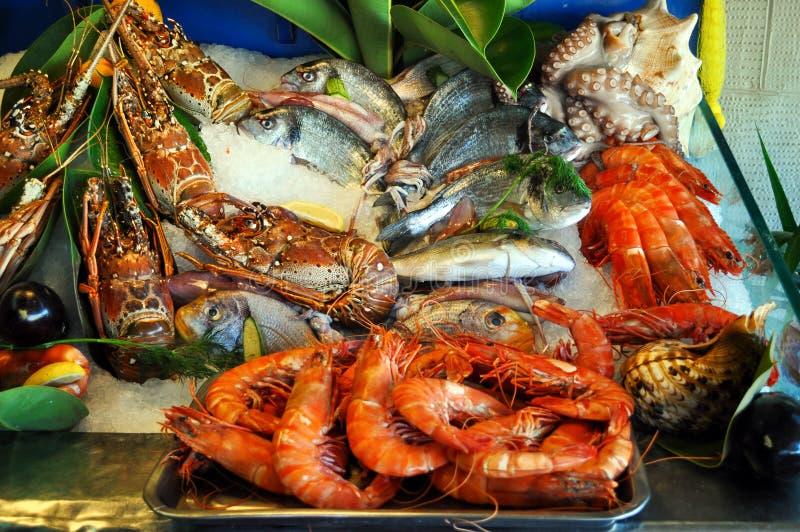 Fish, shrimp, crabs on ice. Fish, shrimp, crabs on ice seafood Greece royalty free stock photo