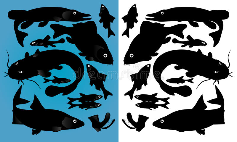 Download Fish silhouettes stock vector. Illustration of white - 20061697