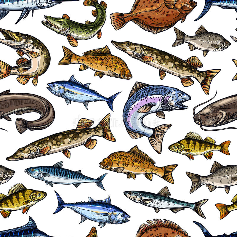 Fish sketch vector seamless pattern. Fish or fishing seamless pattern of vector salmon or trout and tuna, sprat mackerel or flounder. Catch of fresh pike and royalty free illustration