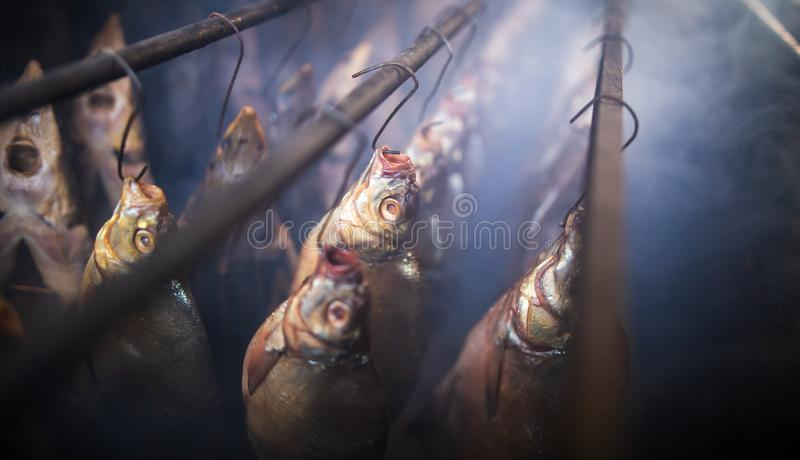 Fish smoked on hooks in smokehouse. Salted fish is smoked on hooks in the smokehouse stock photo