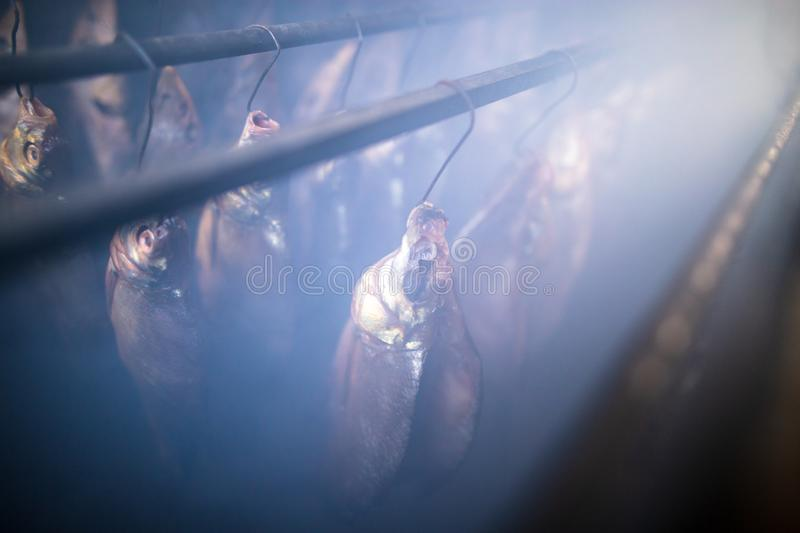 Fish smoked on hooks in smokehouse. Salted fish is smoked on hooks in the smokehouse stock images