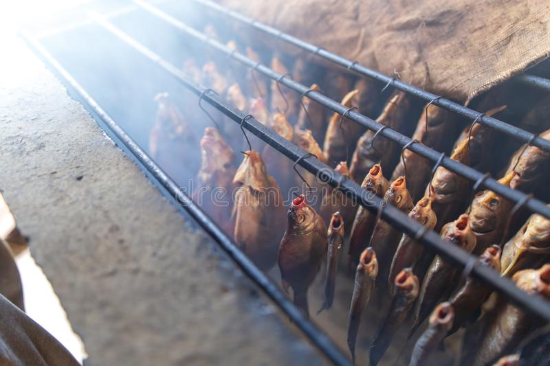 Fish smoked on hooks in smokehouse. Salted fish is smoked on hooks in the smokehouse stock image
