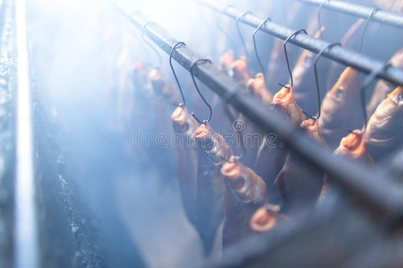 Fish smoked on hooks in smokehouse. Salted fish is smoked on hooks in the smokehouse royalty free stock photography