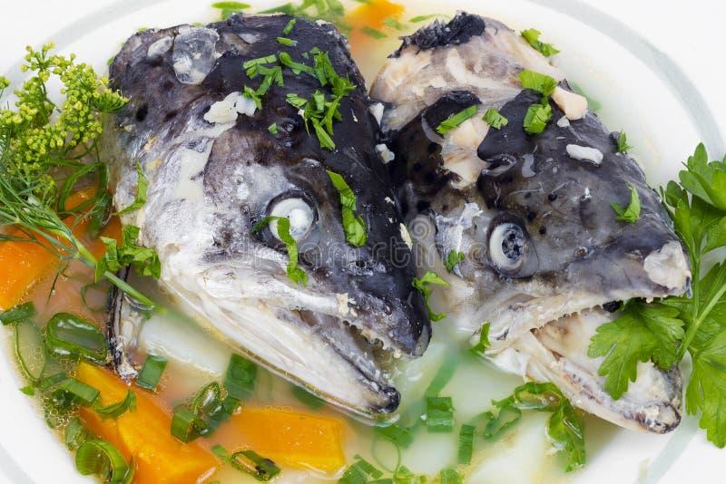 Fish soup royalty free stock image