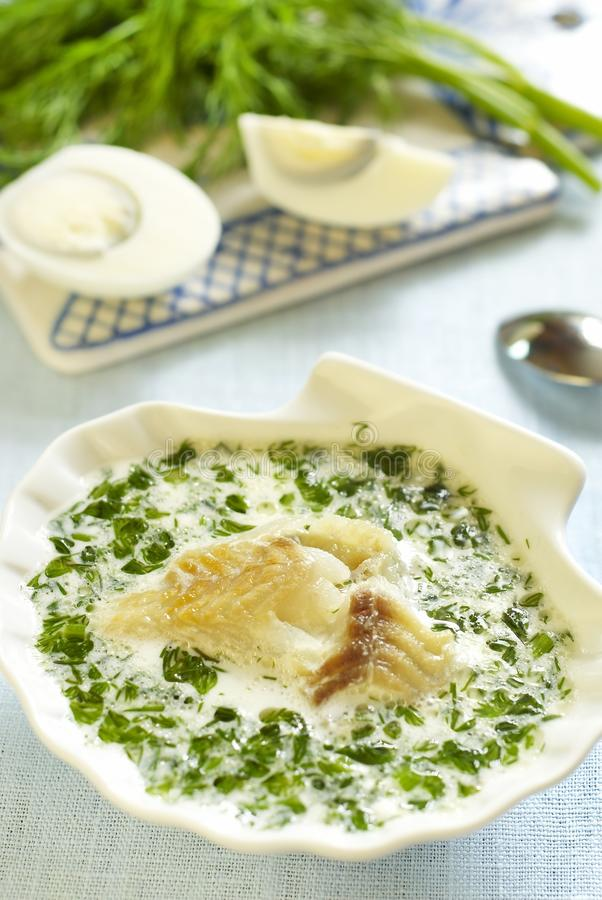 Fish soup with greens and eggs. Fish soup with milk, greens and eggs royalty free stock images