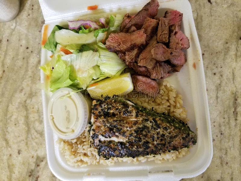 Fish, Steak, Rice and Salad Plate royalty free stock photos