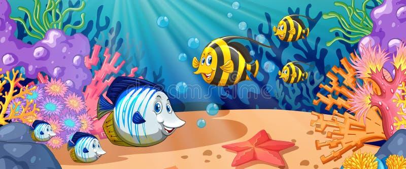 Fish swimming under the ocean. Illustration vector illustration