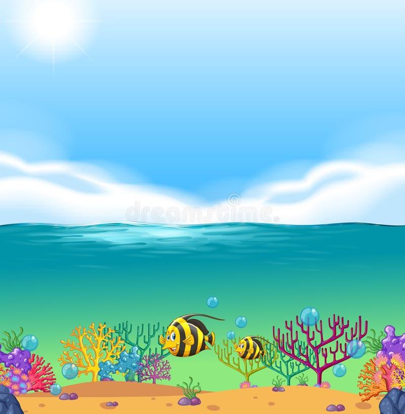 Fish swimming under the sea. Illustration royalty free illustration