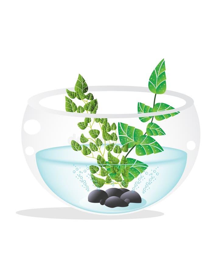 Download Fish tank stock vector. Illustration of fish, vector - 11829872