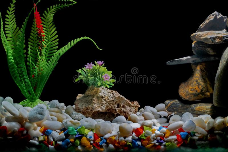 Asian Themed Fish Tank Decorations  from thumbs.dreamstime.com