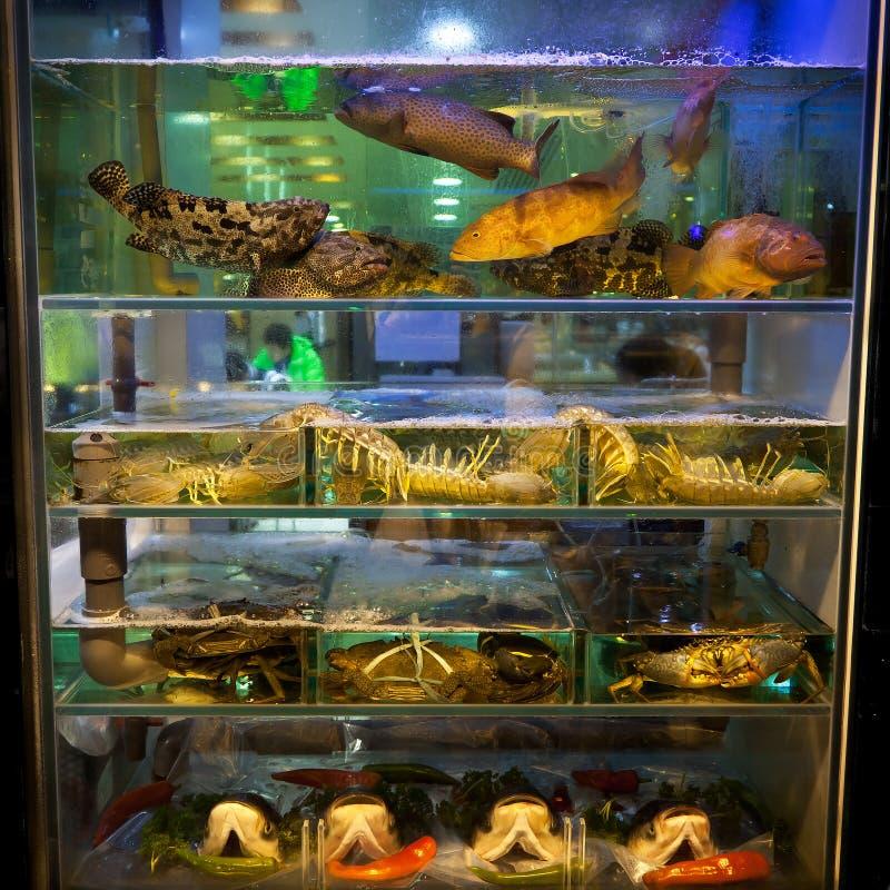 Fish Tank Hong Kong Restaurant. This is a shot taken outside a Hong Kong Restaurant of a fish tank royalty free stock photo