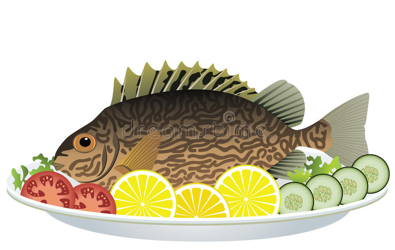 Fish and vegetables on a plate stock illustration