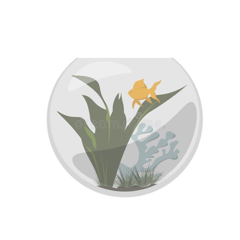 Fishbowl с рыбами золота стоковые фото