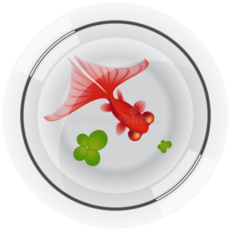 Fishbowl con los pescados del oro ilustración del vector
