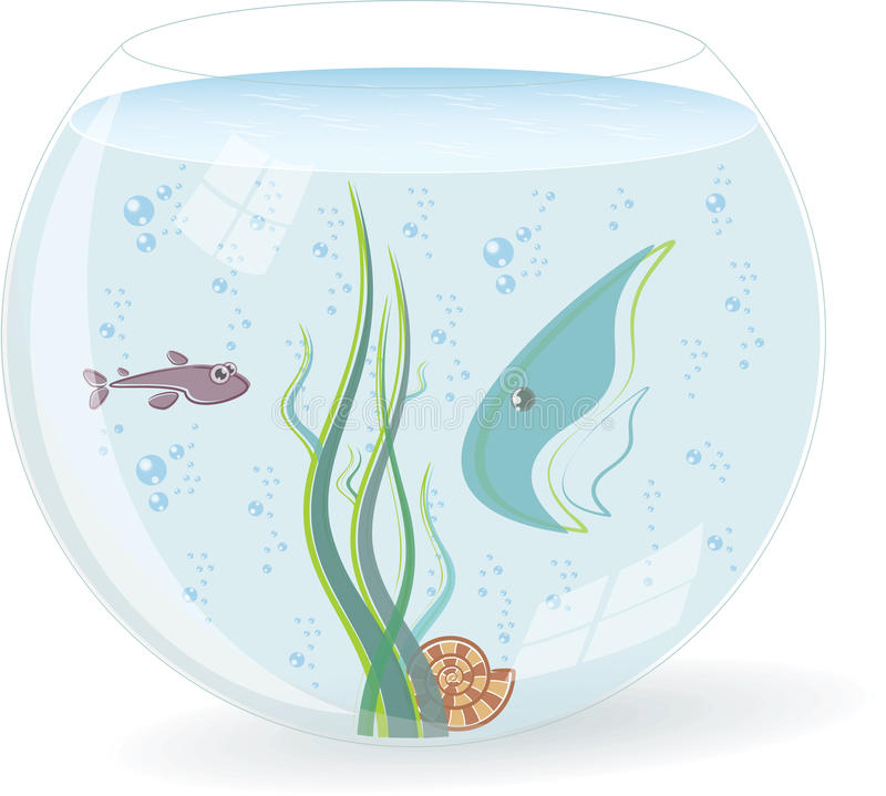 Download Fishbowl with fishes stock vector. Image of blue, transparent - 20129951