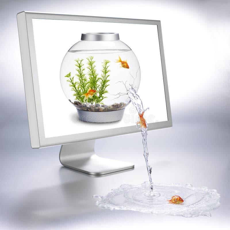 Fishbowl Fluss stockbild