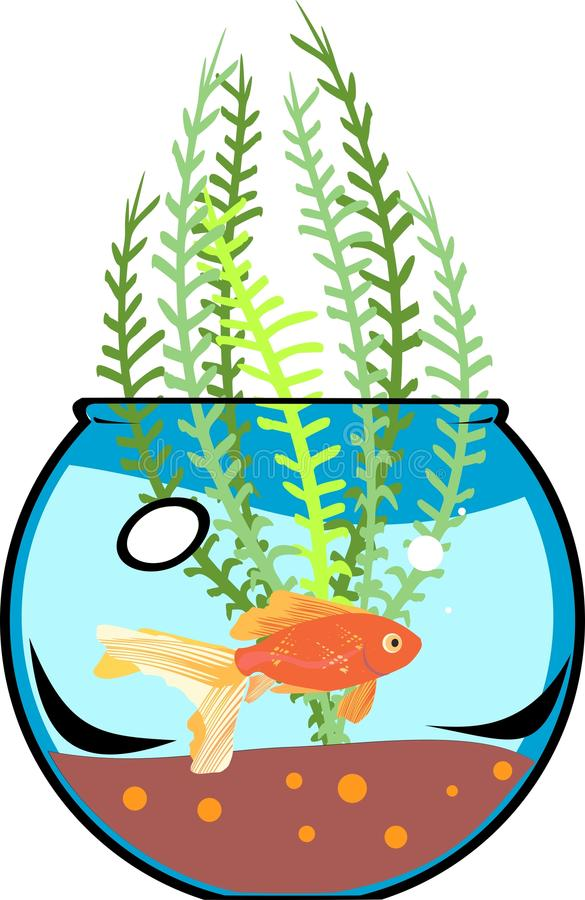 Download Fishbowl with goldfish stock vector. Illustration of life - 38141049